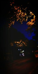 Allee Am Abend (txchris86) Tags: alleeamabend lowlight dunkel allee strase bume herbst autumn trees laternen lights latern street eyeem edited funwithphotoshop