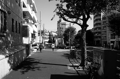 Day 310/366 : Afternoon (hidesax) Tags: 310366 afternoon bw pavement street sunny shadow tree passersby taxis waseda shinjukuku tokyo japan hidesax leica x vario 366project2016 366project 365project