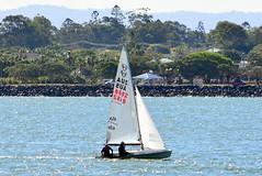 DSC_0366 (LoxPix2) Tags: loxpix queensland australia sailing catamaran trimaran nacra hobie arrow moth 505 maricat humpybongyachtclub humpybash aclass f18 mosquito laser bird spinnaker woodypoint