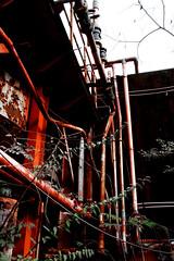eIMG_3848 (tantan_haikyo) Tags:  works factory  ruins urbanexploration urbex  red