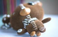 MacroMondays stitches on the belly (Hlne Baudart) Tags: macromondays stitches coutures ours macro belly nikon