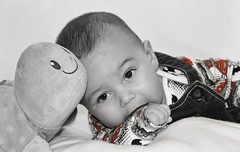 Baby Arthur (Just Caitlin) Tags: toy age young children child arthur photoshoot photo shoot selectivecolour colour blackandwhite white black red boy baby
