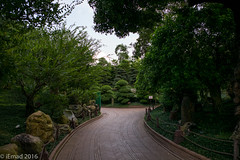 If the path be beautiful, let us not ask where it leads... (EHA73) Tags: summicronm1228asph leica leicam typ240 hongkong garden nanliangarden greenery nature trees path walk travel