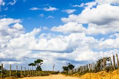 (thais_gobbo) Tags: roa ceu azul nuves nature natureza paisagem caminho linhas horizonte estrada terra brasil bahia serto cerca