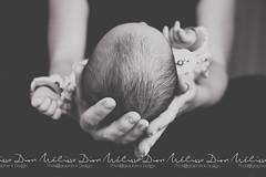 liot - Nouveau-n285 (Mlissa Dion Photographie & Design) Tags: newborn nouveaun boy baby garon bb birthday