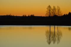 Mellan natt och dag (lena.fredin) Tags: fs161030 emellan fotosondag