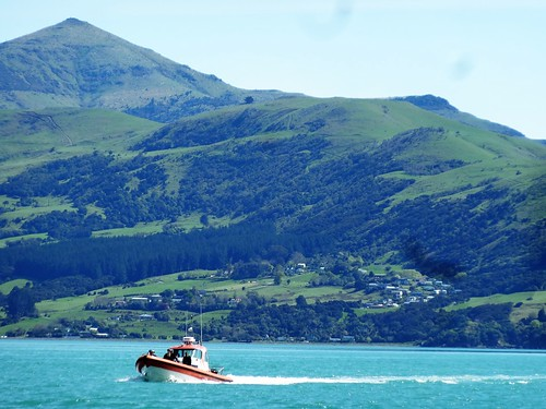 Akaroa on Banks Peninsula. The Coast Guard checking the fishing boats.