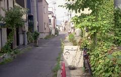 img726 (pon-ko) Tags: 弘前 hirosaki rollei35s superiaxtra400 らくがき