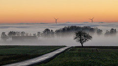 Sonnenuntergang mit Nebel (sonja_57) Tags: deutschland hessen limburgweilburg landschaft herbst nebel sonnenuntergang reflectyourworld