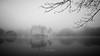 La Bretesche...encore (erictrehet) Tags: nikon nikkor d7000 loireatlantique architecture extérieur reflets paysage landscape noir black brouillard blanc white nikonpassion