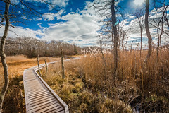 IMG_0756 (Burbank Photography) Tags: canon 6d 17 40 1740l landscape new england cape cod dartmouth frank knowles little river reserve boardwalk marsh