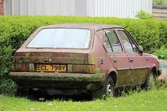 ECL 798Y (Nivek.Old.Gold) Tags: 1983 volvo 340 dl 5door 1397cc