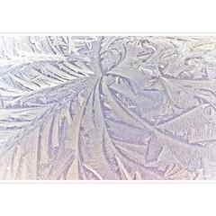 Too Good to Pass (horstmall) Tags: abstract abstrakt form forme frost reif glace ice eis klte froide coldness winter hiver herbst autumn fall automne abstraktion herbstmorgen autumnmorning matin oberlenningen lenningen lenninger tal schwbischealb jurasouabe swabianalps germany deutschland allemagne horstmall