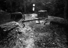 Column base (threepinner) Tags: mamiya japan 50mm mine hokkaido 北海道 日本 universal coal press tmax100 f63 hokkaidou mikasa selfdeveloped 三笠 northernjapan sekor tmaxdeveloper 幌内 horonai 北日本
