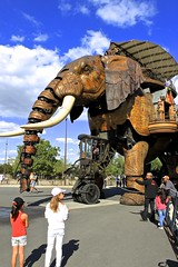 The Great Elephant of Nantes (Photography Lately) Tags: world pictures camera travel blue light summer sky people urban cloud brown sun sunlight white elephant france history tourism nature water animal animals kids clouds wonderful season children wonder french outdoors person photography daylight photo kid cool europe flickr day technology child seasons place mechanical tech natural cloudy photos pics good earth country great seasonal picture culture machine sunny places pic tourist adventure explore photographs photograph journey historical elephants popular nantes attraction invention summery photographylately