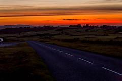 Long, Dark Road Home. (trevorhicks) Tags: