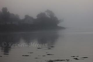 Fog on Bannow Bay