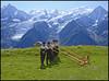Plus qu'un cliché (wilphid) Tags: montagne folklore chamonix parc montblanc musique hautesavoie leshouches parcdemerlet