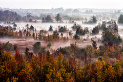 Fall Colors - Mono Cliffs, Caledon, Ontario (mpmark) Tags: morning mist fall landscape fallcolors monocliffs 135mmf2l 5dmkiii