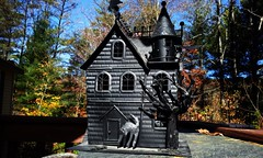 daytime scary castle (stansvisions) Tags: cats black castle halloween catchycolors scary haunted adifferentpointofview stansvisions