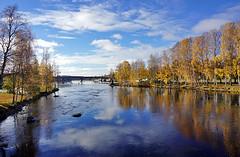 Joensuu - Finland (Sami Niemelinen (instagram: santtujns)) Tags: city bridge colors suomi finland river colours north autumm joensuu syksy silta joki karjala kaupunki ilosaari carelia vrit suvantosilta pohjois pielisjokis