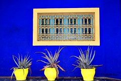 MAROCCO 01-2015 -03 (Elisabeth Gaj) Tags: maroco012015 elisabethgaj marocco marrakach afryka travel jardinmajorelle architecture windows 100commentgroup