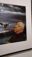 20151113_164346 (So_P) Tags: paris birds de photography photographie exhibition exposition alfred hitchcock philippe oiseaux paume jeu halsman