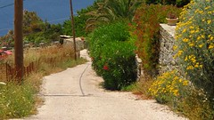 a road on a hill IMG_1046 (mygreecetravelblog) Tags: road island outdoor greece greekislands andros cyclades batsi cycladesislands androsgreece androsisland batsiandros batsivillage