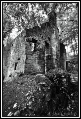 Ruins, Lumsdale Valley Derbyshire (coldnebraskablue) Tags: blackandwhite bw nature overgrown stone nikon ruins industrial derbyshire valley gorge naturalbeauty archaeological ultrawide matlock crumbling 1024 lumsdale d7100