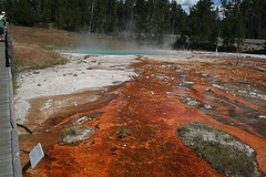 Red bacteria slime at Yellowstone hot spring (OttawaRocks) Tags: park red hot spring yellowstone geology slime hotspring bacteria
