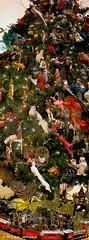 xmas tree_panorama1 (jerry_springberg) Tags: christmas xmas natal weihnachten navidad noel jul natale クリスマス nadal kerstmis jól karácsony nadolig joulu 聖誕節 圣诞节 рождество kersfees gwiazdka kristnasko коледа sarcalogos xριστούγεννα jerryspringberg chrëschtdag рождествохристово krismasi jerryschristmas