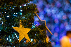 Ento  natal (Ingrid Politano) Tags: light natal 50mm star nikon bokeh estrela luzes enfeites