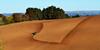 les labours dans le Cantal (AlCapitol) Tags: labour tracteur champs cantal nikon d800 landscape scope
