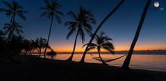 Florida Life: Beach Hammock (Thncher Photography) Tags: sony a7r2 sonya7r2 ilce7rm2 zeissfe1635mmf4zaoss fx fullframe scenic landscape waterscape oceanscape nature outdoors sky clouds shadows silhouettes beach tropical island palmtrees hammock themoorings islamorada floridakeys overseashighway florida atlanticocean
