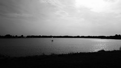 Sailing in the seas of emptiness (cedric_deheyder) Tags: sailing antwerp blackandwhite emptiness