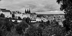 DSC08838 (photoaffaire) Tags: prag praha prague bw blackandwhite moldau tschechien czech republic sonya7 sony a7ii slr magic anamorphot voigtlnder 50mm