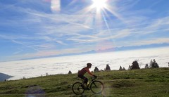 Grass Is Okay Too (collideous) Tags: fall autumn gravel grinding bike ride 29102016 grass sun alps view blue sky