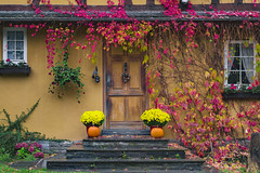 Seasonal Greetings (dlorenz69) Tags: fall autumn herbst farben colors herbstfarben treppe eingang entrance house haus wein ranken blumen krbis pumpkin flowers wine leaves facade bltter fassade traditionell hessen traditional germany deutschland natur