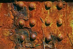 an ode to rust 'n crust and the tooth of time - HTT! (lunaryuna) Tags: wales porttalbot bridge ironbridge detail decay rust crust rustncrust decayart beauty iron lunaryuna textures texturaltuesday