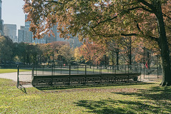 """Color of Autumn 2016 In NYC (Ball Field In Central Park) (nrhodesphotos(the_eye_of_the_moment)) Tags: dsc0778172 """"theeyeofthemoment21gmailcom"""" """"wwwflickrcomphotostheeyeofthemoment"""" architecture ballfield lightfixtures seats fence stands outdoor yard autumn season colorofautumn2016innyc metal manhattan nyc grass plantlife trees nature perspective skyline centralpark botanicals shadows reflections landsape"""
