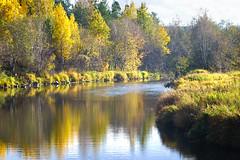 Revda River (SergeyKalugin) Tags: river primotar 135 meyer sony a7
