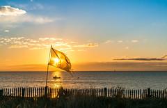 pirate #44 : feel the breeze (m@t.) Tags: hff mer mt contrejour bateau boat sea sunrise ileder week442016 52weeksthe2016edition weekstartingfridayoctober282016 44 feel breeze feelthebreeze