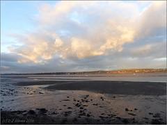 Low tide (ExeDave) Tags: p1020671 exe estuary starcross teignbridge devon sw england gb uk coastal tidal lowtide landscape waterscape sssi spa natura nature2000 site ramsarsite mudflats sandbank sand