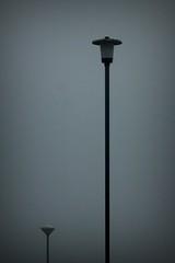 320.365.2016 (johnny the cow) Tags: lamps lights streetlights security fog mist cloud nlw llgc nationallibraryofwales llyfrgellgenedlaetholcymru ceredigion wales cymru aberystwyth 365 366 2016 catalogue collection diary photo aphotoaday