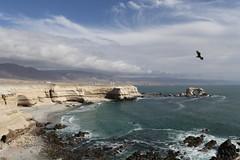 La Portada, Antofagasta (r o m y) Tags: antofagasta nortechile chile