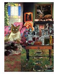 Taurus - StarCat (tjager) Tags: astrology zodiac taurus starcat livingferal cat catlover siamese earthsign bull poppy collage art analog
