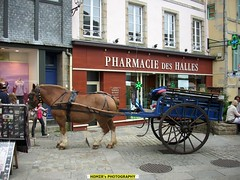 """Pharmacy and Horse Carriage, Quimper (""""Homer's Photography"""") Tags: travel flickr homernew1 homernew1sphotography homernew1sodyssey photography amateur pharmacy horse horsecarrieage city cityview citylife france finistere breizh bzh europe eu season summer beautiful colors pleasereadmyprofile libertegalitfraternit outdoor people street homernew1washere bretagne old slate house ardoise"""