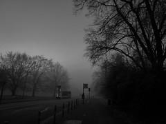 St.Pauli - Helgolnder Allee (chicitoloco) Tags: helgolnder allee stpauli hamburg helgolnderallee nebel fog misty mist