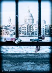 Lovers Padlocks On Railings Riverside By Millennium Bridge (Peter Greenway) Tags: railings millenniumbridge locks loverslocks padlocks bridge stpauls stpaulsatnight millenniumbridgeatnight london loverspadlocks londonatnight