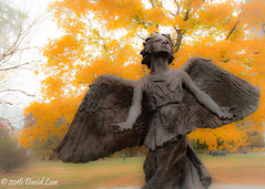 Angel of Hope (david_law44) Tags: angel hope washington park fall statue bronze christmas box richard paul evans book children springfield illinois